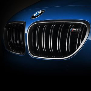 BMW-M-PERFORMANCE-Grille-BMW-6-serie-F06-F12-F13-M6-Chroom